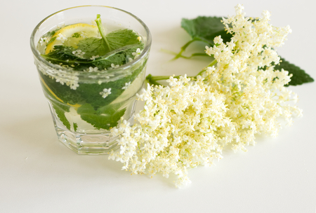 Elderberry (Sambucus nigra) infusion in water, the flowers and berries are used most often medicinally against flu and fever, angina. Banco de Imagens