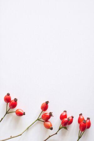 Herbstzusammensetzung mit roten Hagebutten auf weißem Tabellenhintergrund. Herbst-, Halloween- und Thanksgiving-Design, flache Lage, Draufsicht.