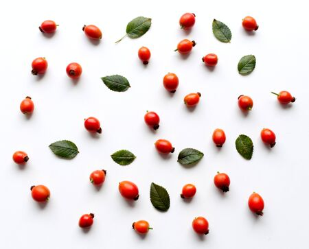 Autumn composition with red rose-hips on white table background. Fall, Halloween and Thanksgiving design,flat lay, top view. Stock Photo