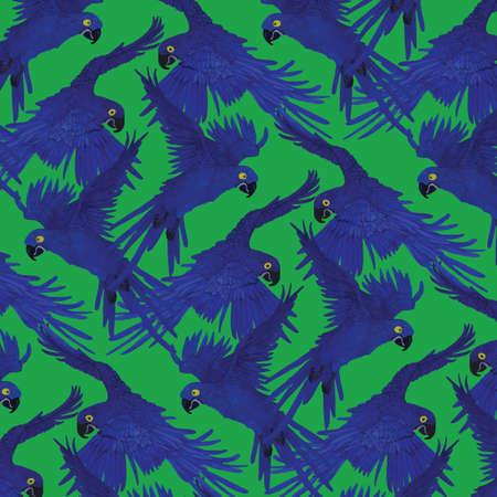 머코 앵무새와 패턴입니다. 일러스트