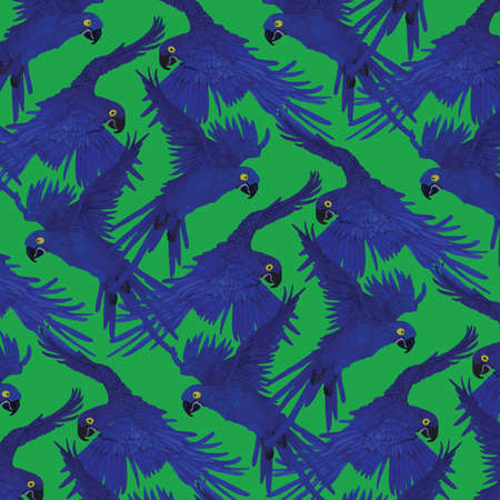 Pattern with macaw parrots.