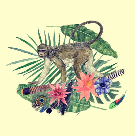 Watercolor hand drawn illustration with monkey, feathers, flowers.