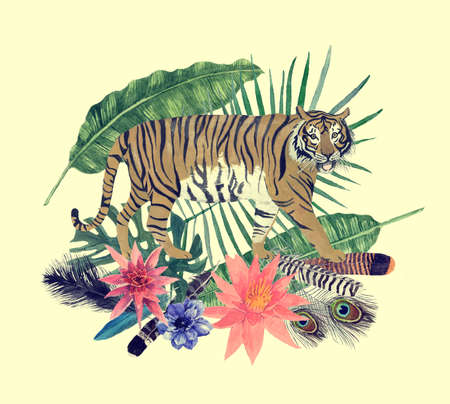 Hand drawn vintage watercolor illustration with tiger, feathers, flowers, leaves. 스톡 콘텐츠