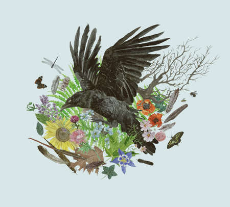 Hand drawn watercolor vintage style illustration with raven.