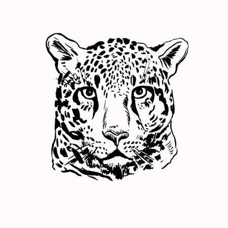 leopard head print 스톡 콘텐츠 - 143047415