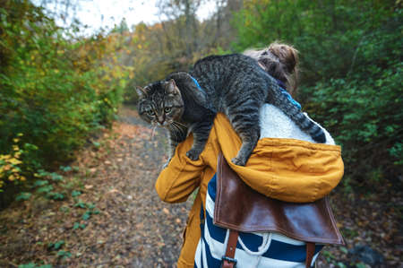 A girl walks through the autumn forest with a cat on her shoulder.