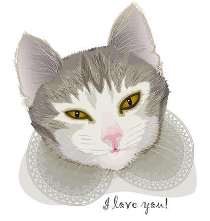 pampered: Portrait pet cat in a elegant collar Illustration