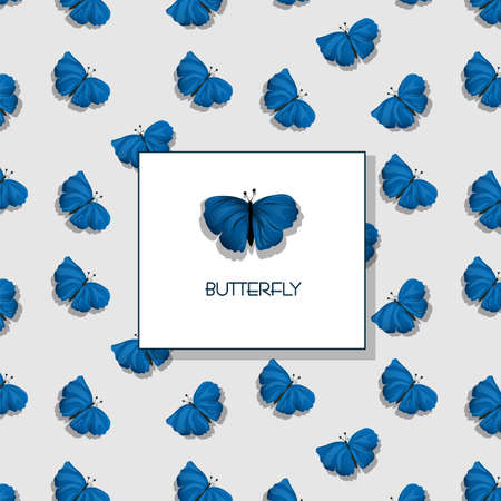 butterfly background: Background wallpaper and butterfly isolated Illustration