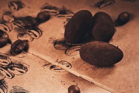 truffle: chocolate truffle lying on sketch Stock Photo