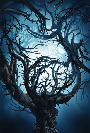 woodland  horror: mystic tree with big thorns at night in moon light