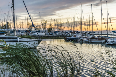 Yacht jetty is at lake at sunset in summer. Sailing boat pier on lake at dusk, reed blown by wind, Balaton, Hungary.