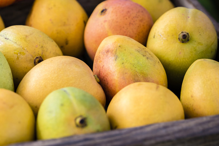 Fresh mango fruit in wooden box, full frame, closeup. Yellow yellow, red, green color, display at local market stall in Sydney, Australia.