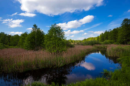 proceeding: the small river proceeding in the territory of Republic of Belarus