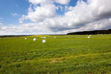 mechanization: the grass mown and packed into bales intended for feeding of animals in the winter