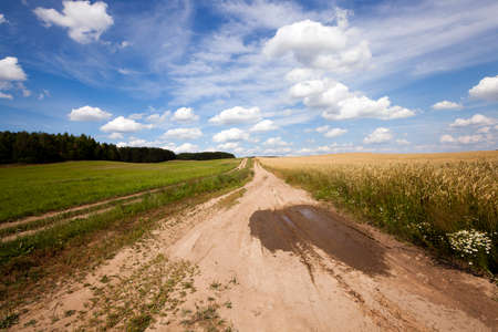 rural areas: the small not asphalted road in rural areas Stock Photo