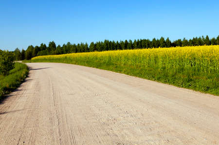 vanishing: small paved vanishing  rural road. Belarus. spring Stock Photo