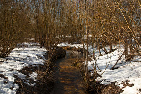 streamlet: the small streamlet located in the woody district, in a winter season