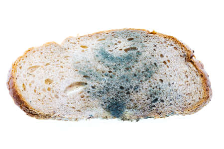 bio food: mold on food. bread. close up Stock Photo