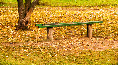 under a tree: the old broken bench located under a tree. autumn