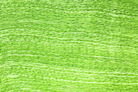 serwetki: photographed closeup Pack green napkins