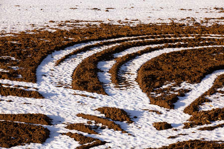 mud and snow: car traces left on the plowed field. winter Stock Photo