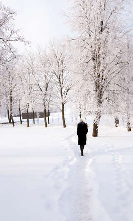 black shadow: the girl going on a footpath in park. winter season