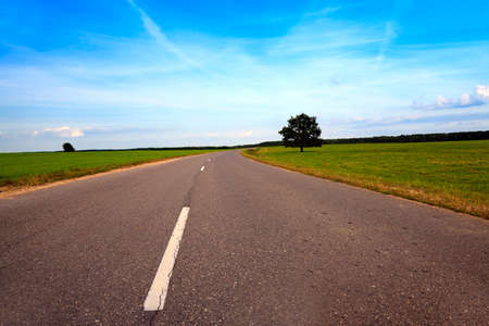 meagre: road, located in the countryside in the spring  season Stock Photo