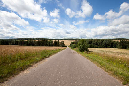 meagre: Rural asphalted road in the summer. road through the field
