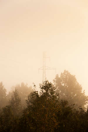 electric line: electric line through the forest. autumn. heavy fog. sunrise sun Stock Photo