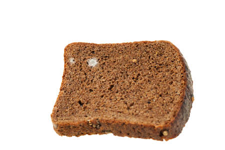 mustiness: photographed close-up of black bread, which started to grow mold. isolated