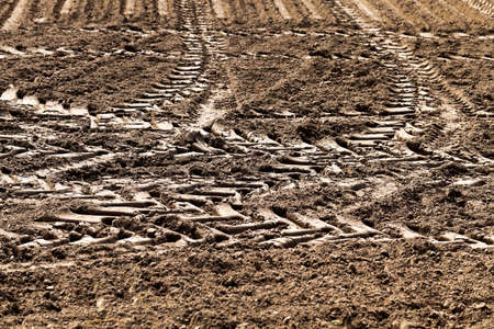 plough land: a tractor plowed field agricultural land in  Spring. sown close-up.