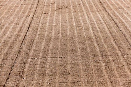 sowing: plowed and ready for sowing agricultural fields. close-up Foto de archivo