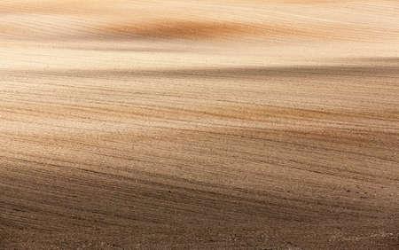 siembra: arado y listo para la siembra de los campos agrícolas. de cerca