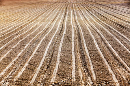 agriculturalist: agricultural field, which was plowed for sowing crops. Spring