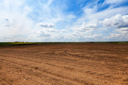 an agricultural field which has been plowed for planting crops. Spring. close-up