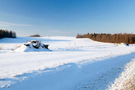 snowlandscape: covered with white snow ,snow-covered,  field in winter