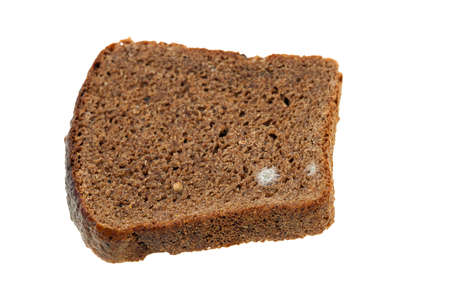 bread mold: photographed close-up of black bread, which started to grow mold. isolated