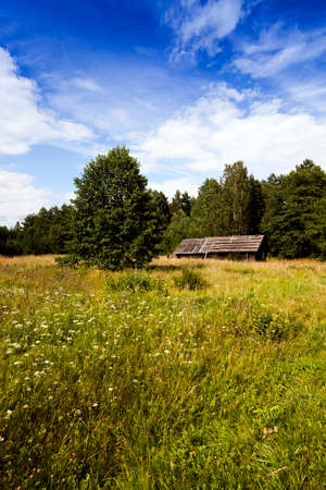 abandoned house - old wooden abandoned house.It located in the countryside. Belarus. Stock Photo