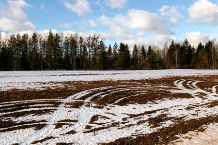 white winter: covered with white  snow-covered  field in winter Stock Photo