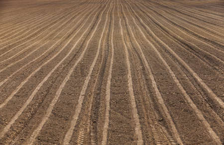 plough land: agricultural field, which was plowed for sowing crops. Spring