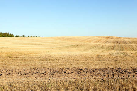 ie: agricultural field, which is going to cook and on about other options, ie themselves cause harm