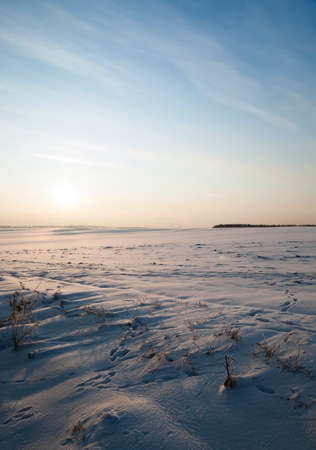 sheeted: photographed field covered with snow. winter season