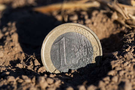 photographed close-up of a European euro, lying on the ground, an agricultural field Stock Photo