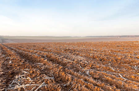 photographed close-up of plowed agricultural field, the land is covered with white frost. blue sky,