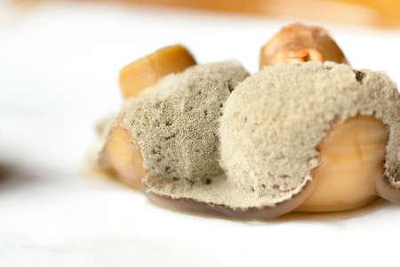 beschimmelde champignons