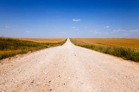 Dirt rural road passing through a field