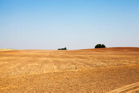 plowed land in the agricultural field after harvest of cereal, tractor tracks on the ground Stock Photo