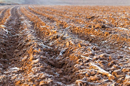 crop margin: photographed close-up of plowed agricultural field, the land is covered with white frost. Stock Photo