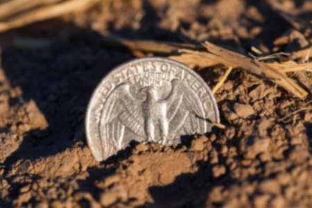 25 cents: photographed close-up of an American coin in 25 cents in a pile of straw left after harvest, defocused