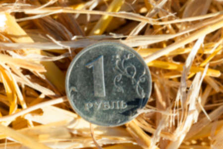 straw twig: photographed close-up of one Russian ruble pile of straw left after harvest, defocused